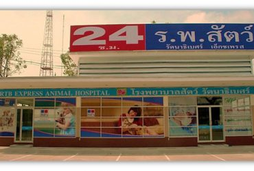 rtb-animal-hospital-express-khae-rai-1