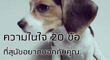 20iden