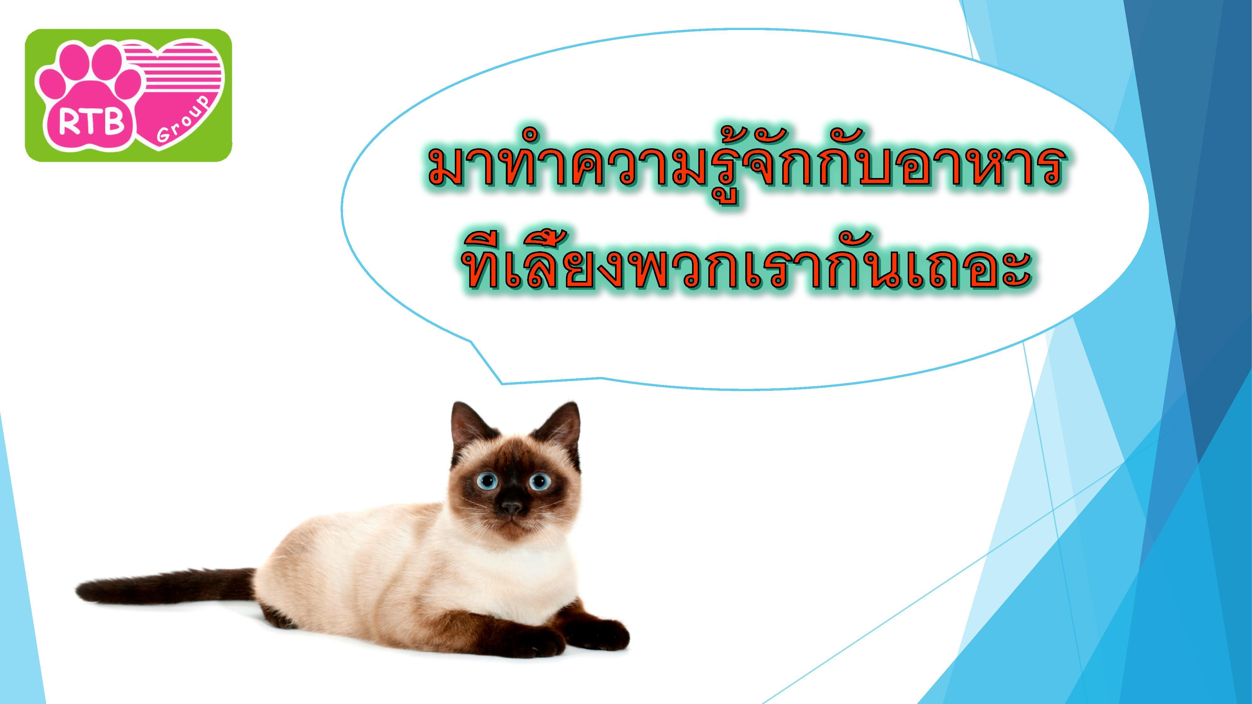 อาหารแมว max extra -page-001