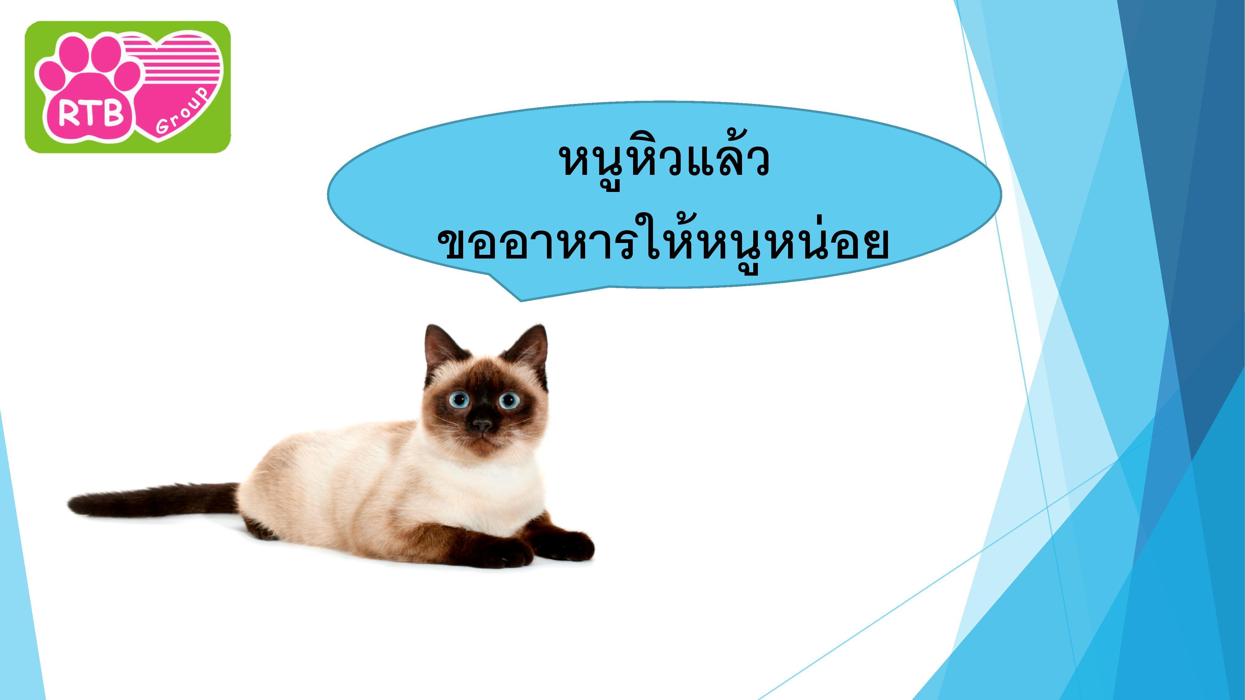อาหารแมว max extra -page-005
