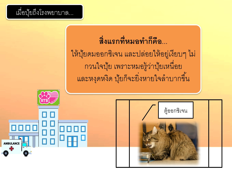 DHpui-page-005