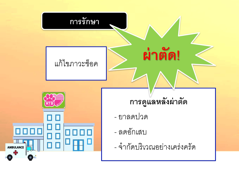 DHpui-page-011